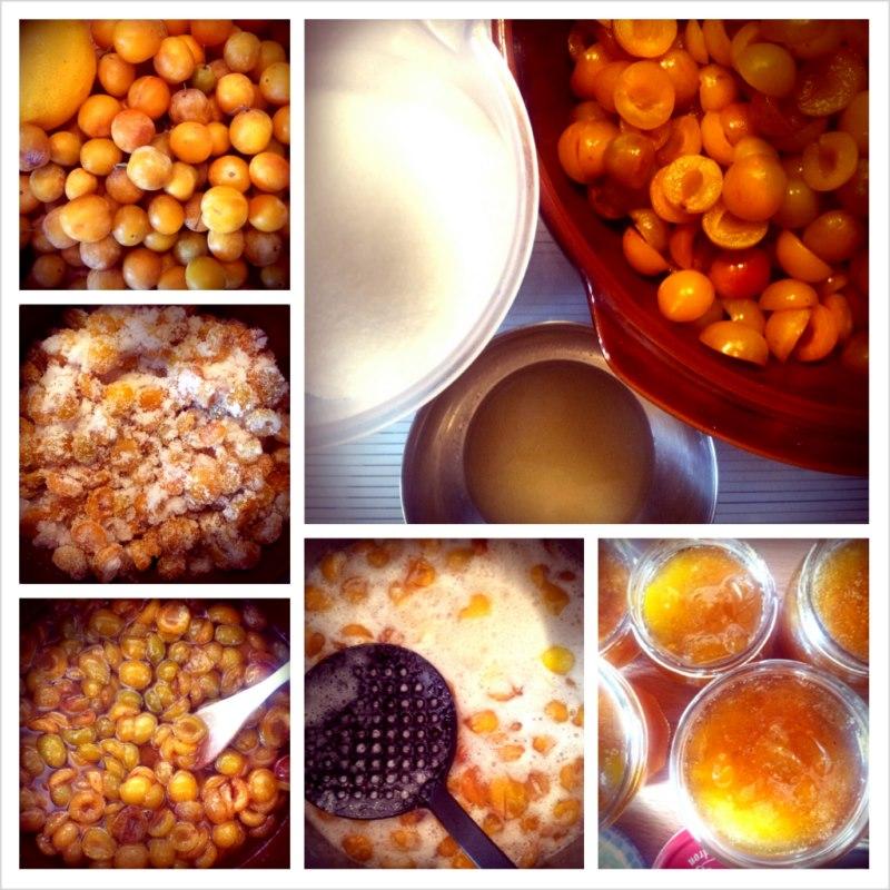 photo préparation recette Confitures de mirabelles